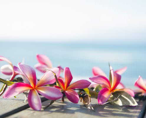 Gedanken und Gedanken formen Lilien