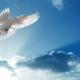 heilige Geist